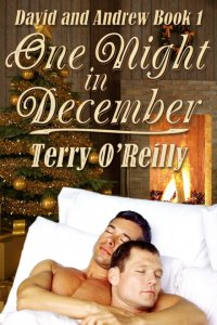 David and Andrew Book 1: One Night in December [Print]