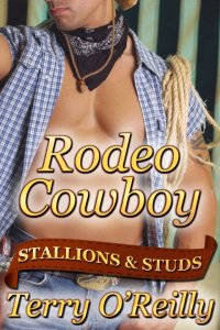 Stallions and Studs: Rodeo Cowboy