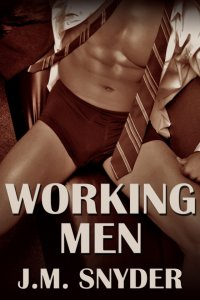 Working Men 1 Box Set