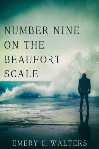 Number Nine on the Beaufort Scale