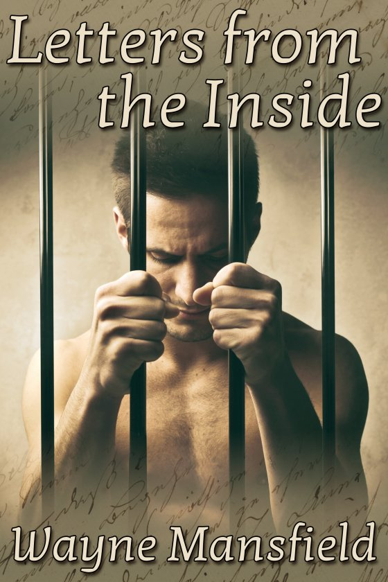 Letters from the Inside by Wayne Mansfield