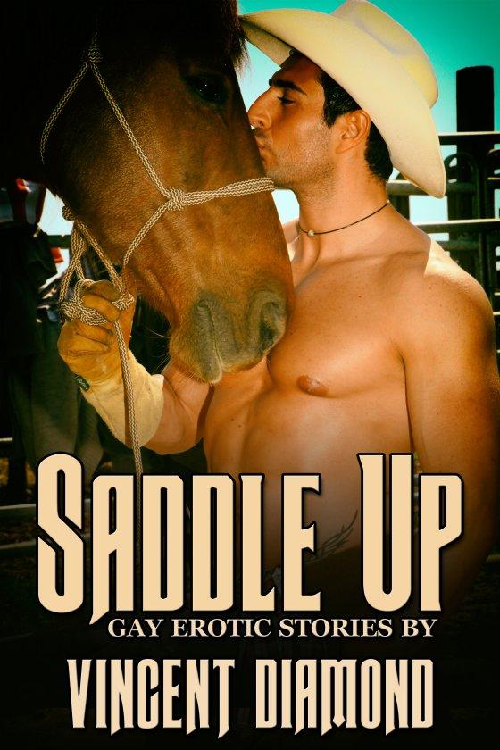<i>Saddle Up Box Set</i> by Vincent Diamond