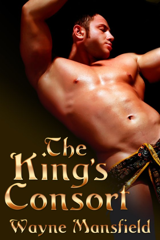Now offering box sets! <i>The King's Consort</i> by Wayne Mansfield