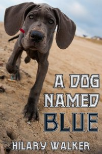 A Dog Named Blue