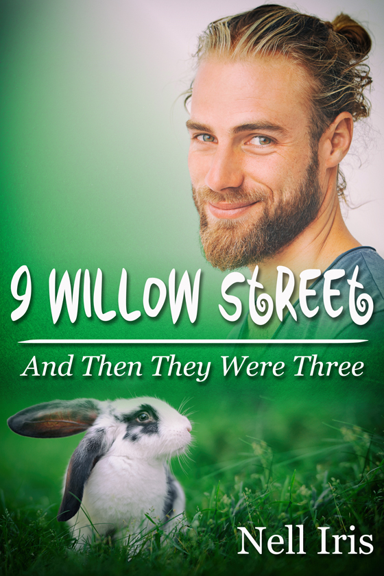 <i>9 Willow Street: And Then They Were Three</i> by Nell Iris