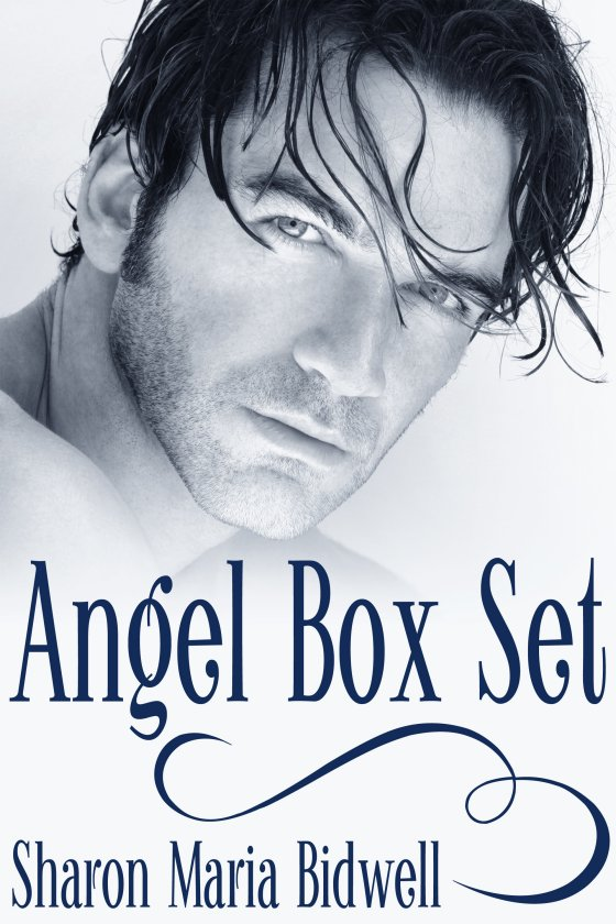 <i>Angel Box Set</i> by Sharon Maria Bidwell