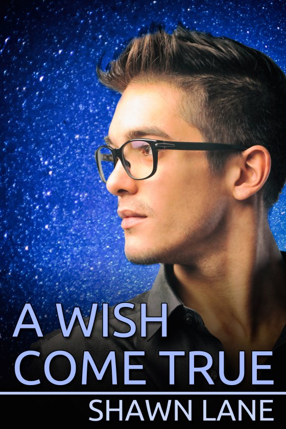 <i>A Wish Come True</i> by Shawn Lane