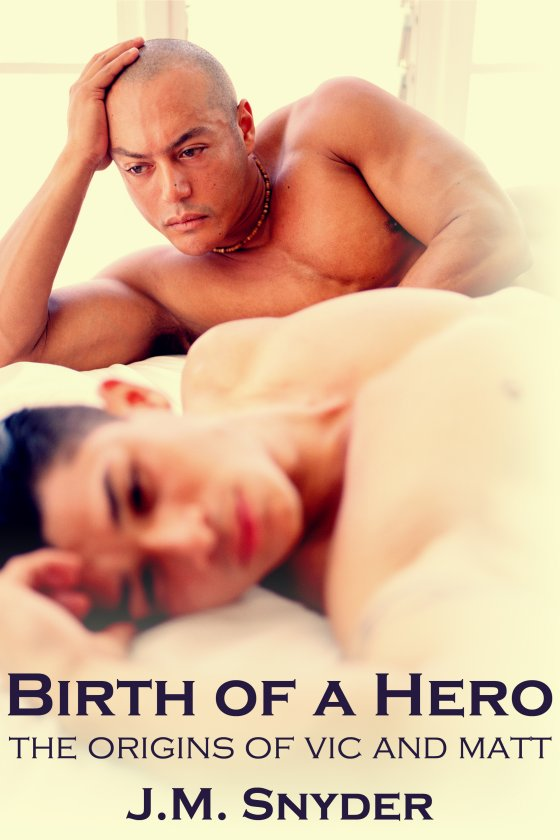 Birth of a Hero Box Set by J.M. Snyder