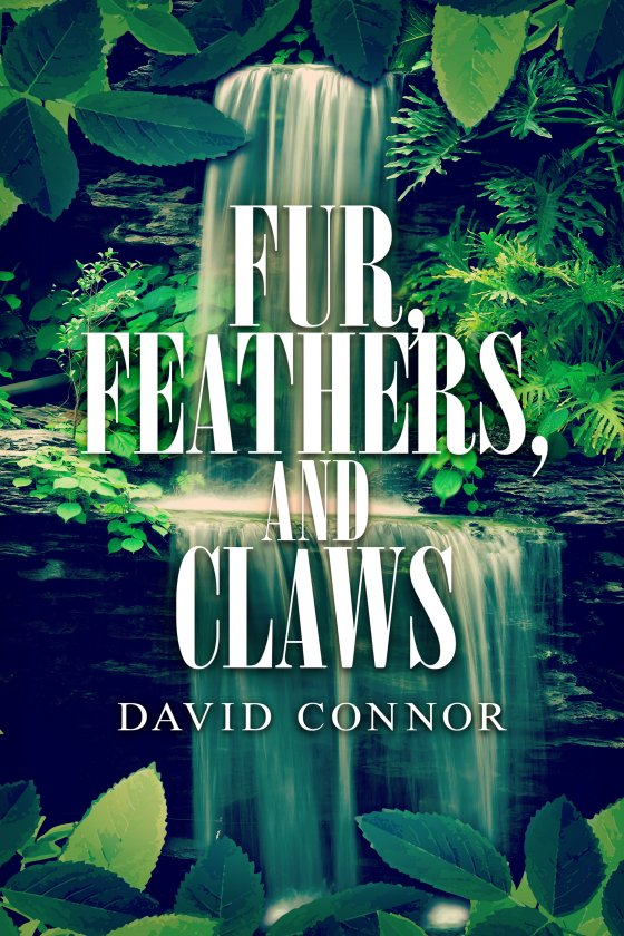 <i>Fur, Feathers, and Claws</i> by David Connor