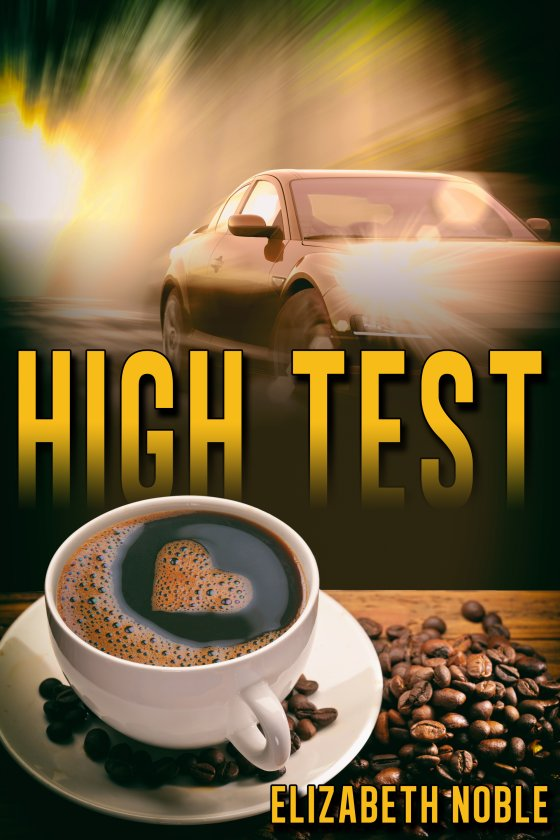 <i>High Test</i> by Elizabeth Noble