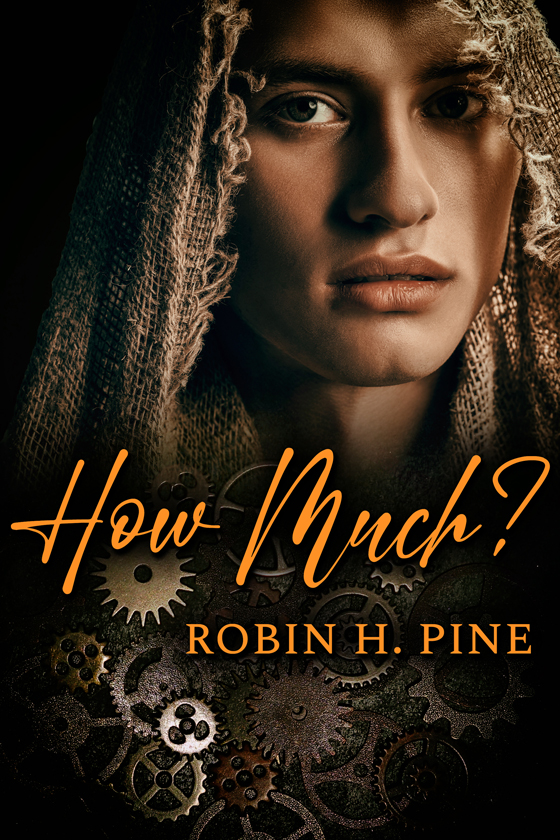 <i>How Much?</i> by Robin H. Pine