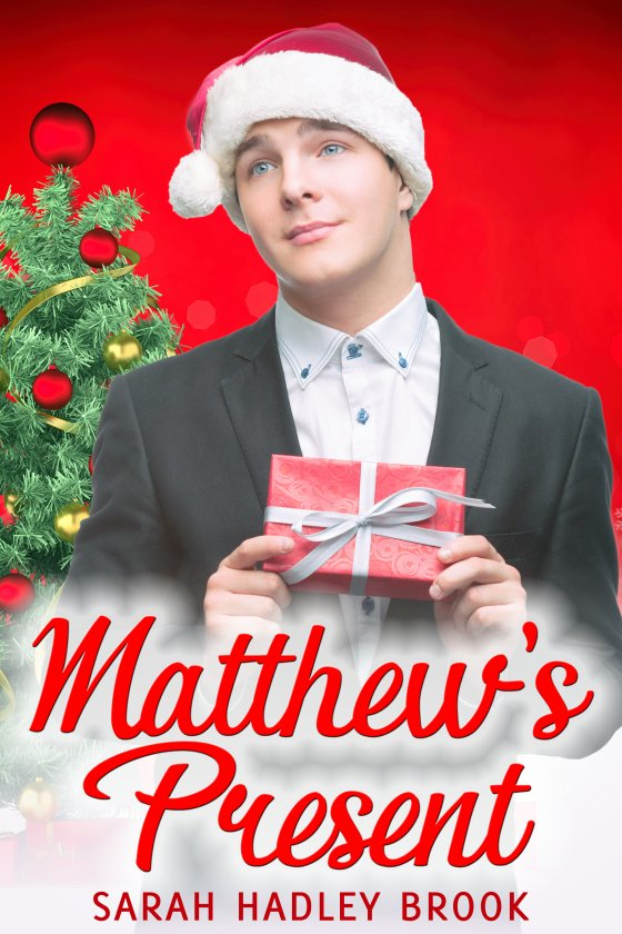 <i>Matthew's Present</i> by Sarah Hadley Brook