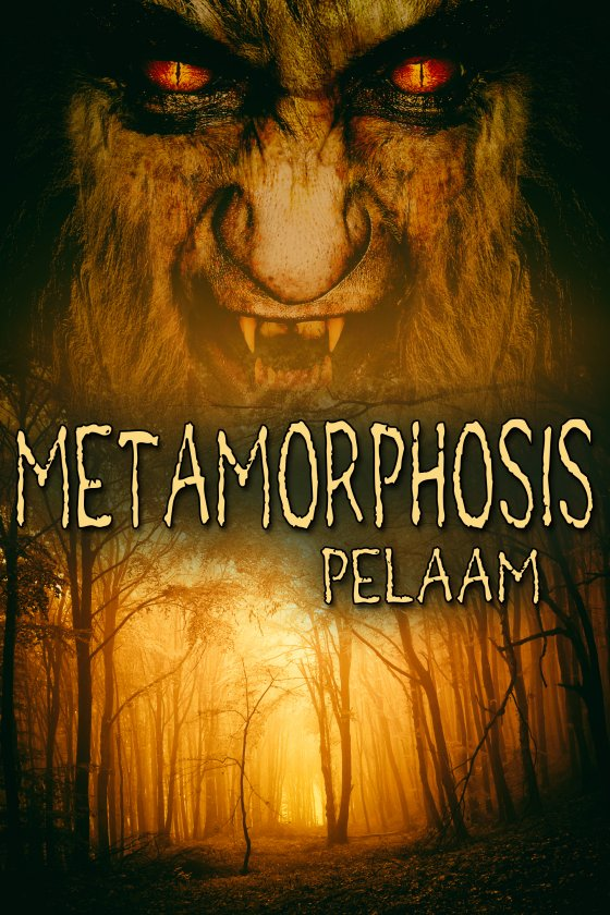 <i>Metamorphosis</i> by Pelaam