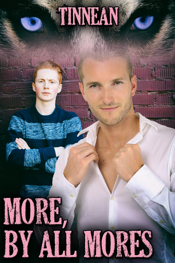 <i>More, by All Mores</i> by Tinnean