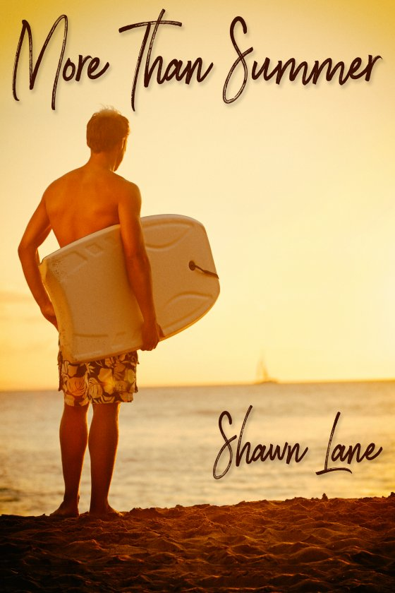 <i>More Than Summer</i> by Shawn Lane