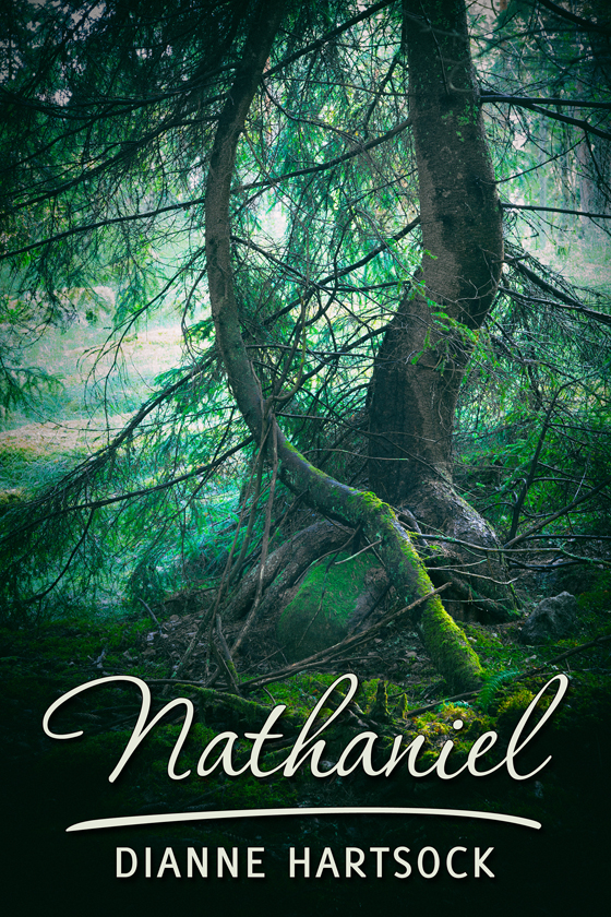 <i>Nathaniel</i> by Dianne Hartsock
