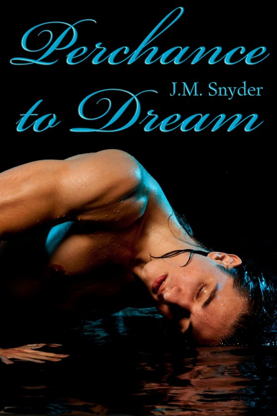 Perchance to Dream Box Set by J.M. Snyder