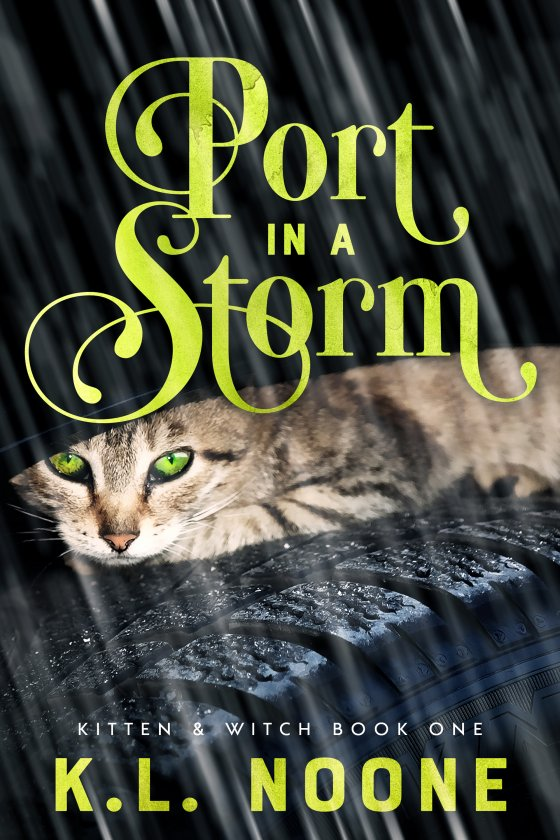 <i>Port in a Storm</i> by K.L. Noone