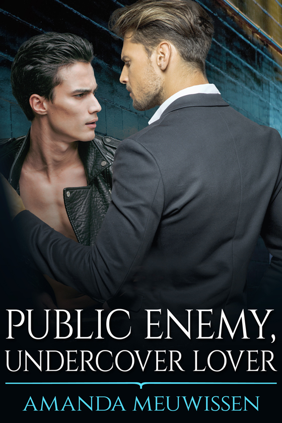 <i>Public Enemy, Undercover Lover</i> by <strong>Public Enemy, Undercover Lover</strong> by Amanda Meuwissen