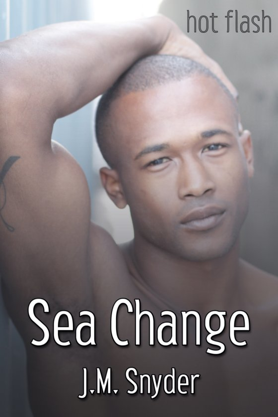 <i>Sea Change</i> by J.M. Snyder