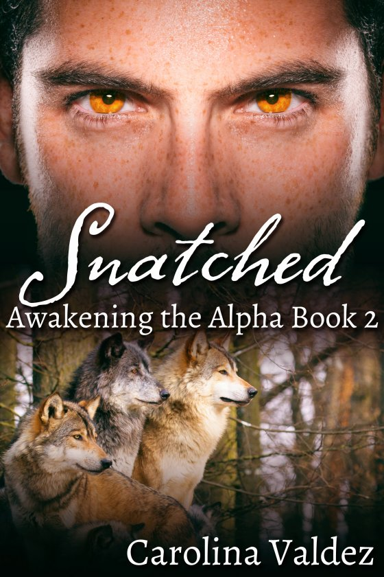 <i>Snatched</i> by Carolina Valdez
