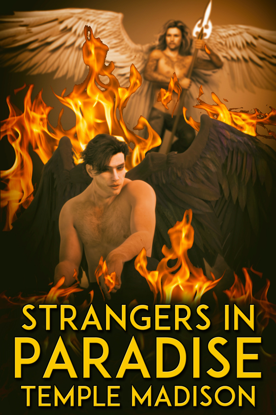 <i>Strangers in Paradise</i> by Temple Madison