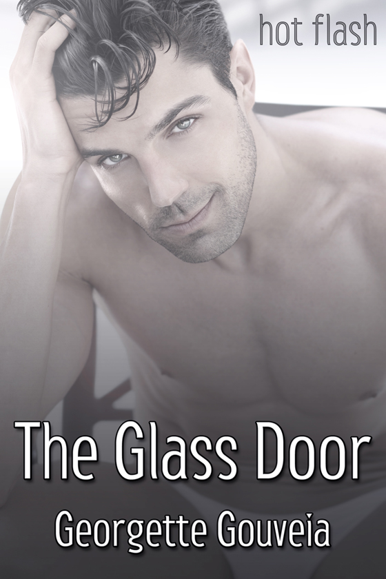 <i>The Glass Door</i> by Georgette Gouveia