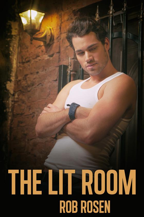 <i>The Lit Room</i> by Rob Rosen