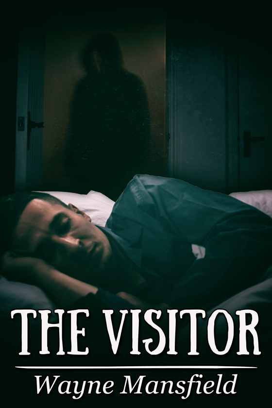 <i>The Visitor</i> by Wayne Mansfield