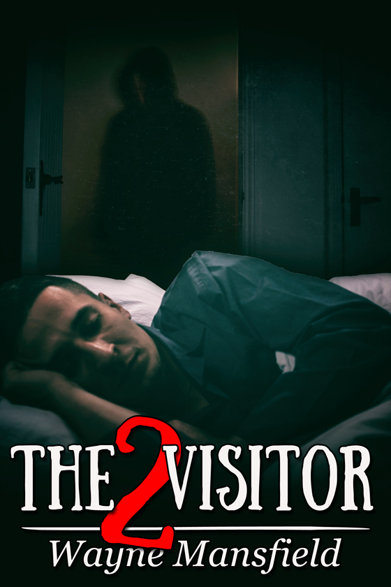 <i>The Visitor 2</i> by Wayne Mansfield