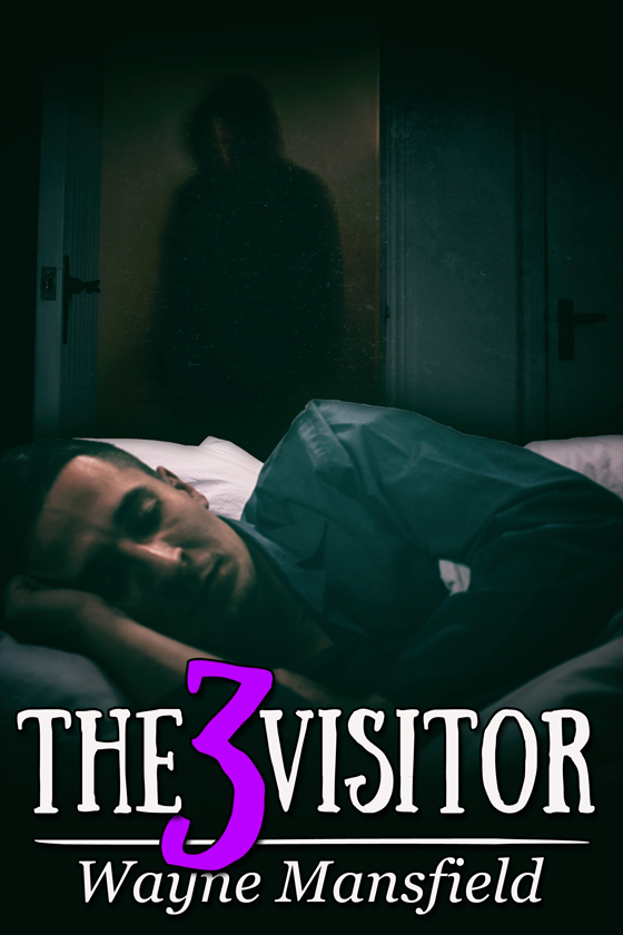 <i>The Visitor 3</i> by Wayne Mansfield