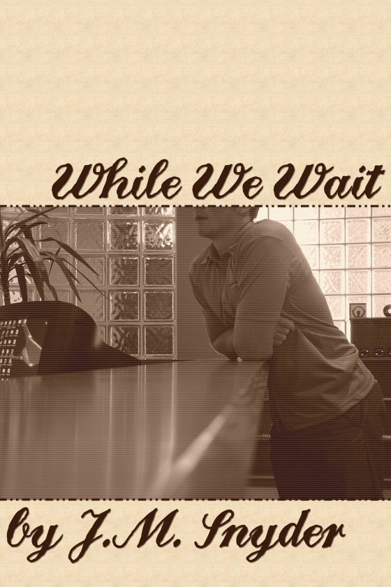 While We Wait by J.M. Snyder