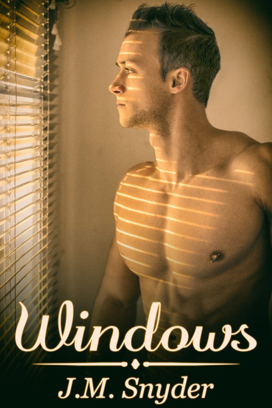 Windows by J.M. Snyder