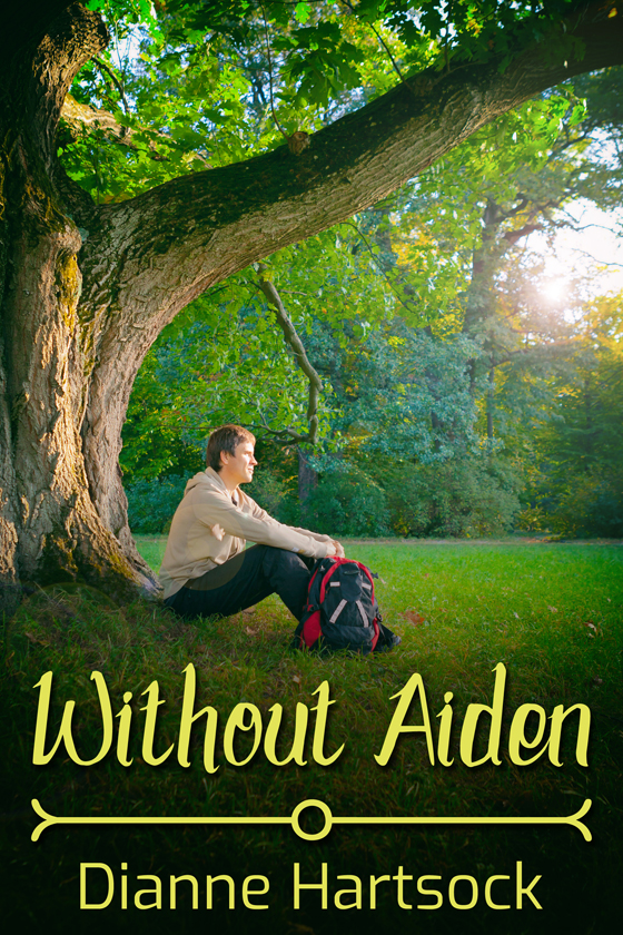 <i>Without Aiden</i> by Dianne Hartsock